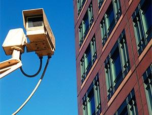 security-camera-gator-patch
