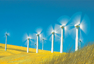 wind-power-gator-patch